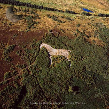 Mormond White Horse, Mormond Hill, Aberdeenshire