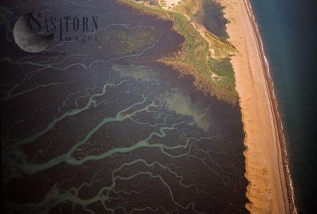 Mud Flats At Blakeney Point, Norfolk