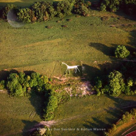 Marlborough White Horse (Preshute White Horse), Wiltshire