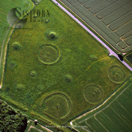 Oakley Down Barrows Cemetery, Disc Barrows, Near Sixpenny Handley, Dorset
