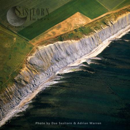 Cliff Just East Of Kimmeridge Bay, Jurassic Coast, Dorset