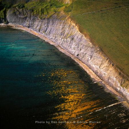 Tyneham Cap, Brandy Bay, Jurassic Coast, Dorset