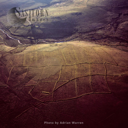 Iron Age Fields, Hentor Warren, Dartmoor, Devon