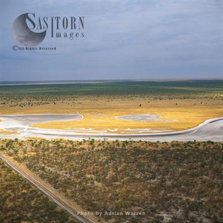Etosha Pan On The Western End Connecting To The River Oshigambo. It Is A Large Endorheic Salt Pan, Forming Part Of The Kalahari Basin, Etosha National Park, North Of Namibia