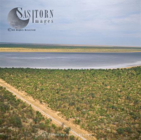 Etosha National Park, Road From Savannah Area Leading Up To The Etosha Pan