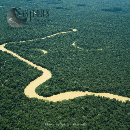 Ecuador Rainforest And River Cononaco – Part Of The Amazon Basin, Cononaco Area, South America, 2002