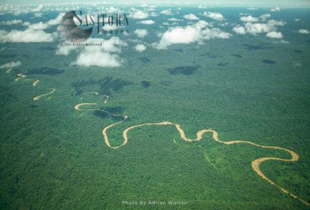 Ecuador Rainforest – Showing Meandering River And Ox-bow Lakes, Part Of The Amazon Basin, Cononaco Area.