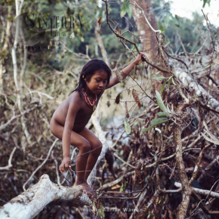 Waorani Indian Girl: Rio Cononaco, Ecuador, 1983