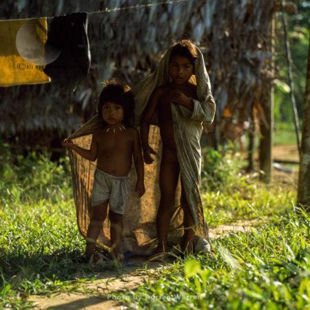 Waorani Indians: Children, Riio Cononaco, Ecuador, 2002