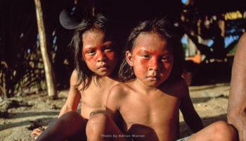 Ecuador: Waorani Indians (355 Videos)