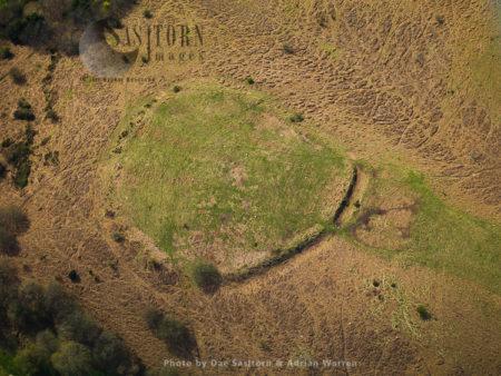 Trendle Ring, Quantock Hills, Near Bicknoller, Somerset, England
