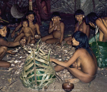 Waorani Indians: Preparations For The Aemae Are Primarily A Time For Socializing, Gabado, 1974, Ecuador
