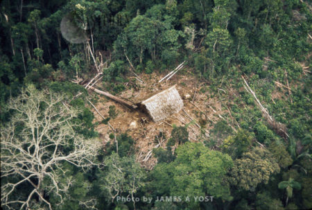 Aerial View Of Waorani Indians Settlement In The Rainforest, Near Rio Cononaco, Ecuador, 1973