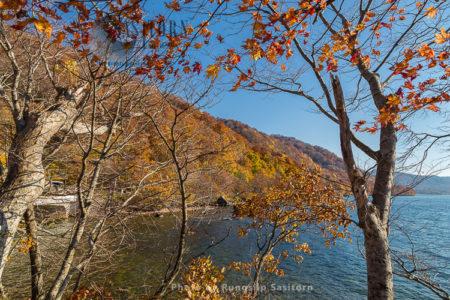 Beautiful Autumn Colors At Oirase Gorge And Lake Towada, Tohoku Japan.