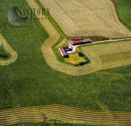 Farmstead, Orkney Islands, Scotland