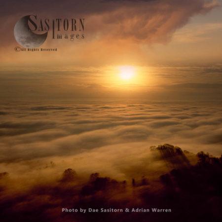 Sunrise And Mist Over The Somerset Levels, Near Glastonbury, Somerset, England