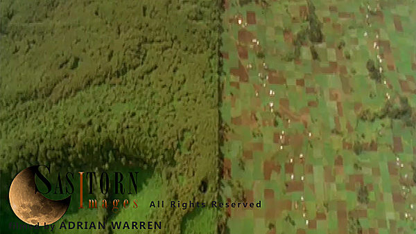 Forward tracking aerial shot, DRC countryside, camera looking down vertically on park border, forest on left, farmland on right, park finishes with shot continuing over patchwork of fields intersected by roads and buildings