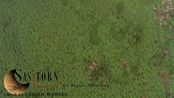Forward tracking aerial shot, Rwandan countryside, camera tilted down vertically on evenly lit wooded farm land